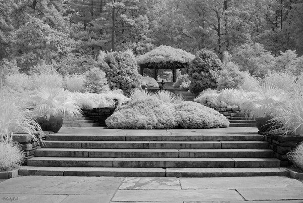 TRAVEL-2013-DUKE GARDENS