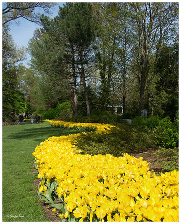 TRAVEL-2013-SHERWOOD GARDENS
