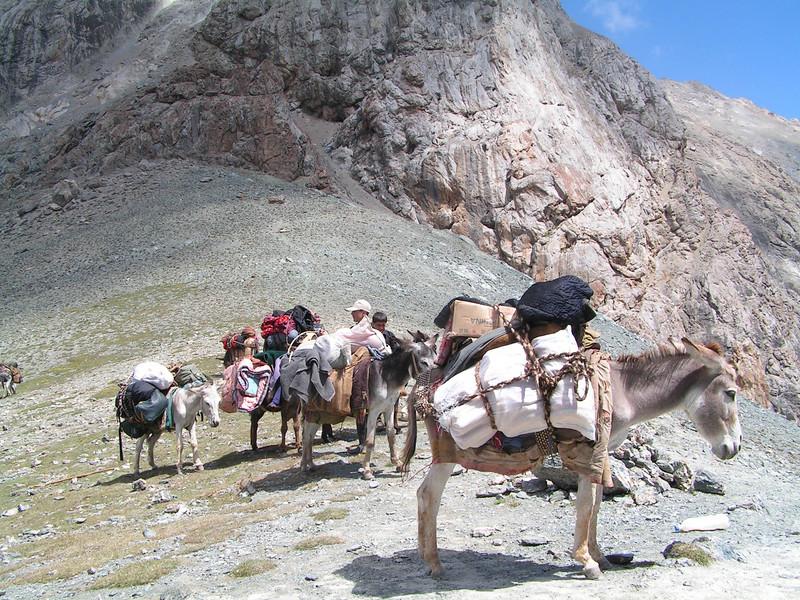 Paso de las mulas con nuestra carga entre montaña y montaña