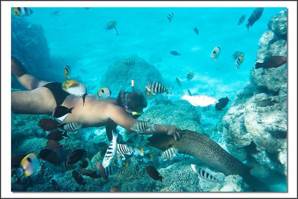 Tahiti 2002