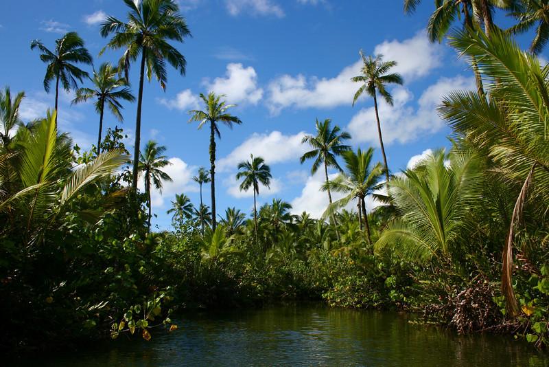 Tahiti 040