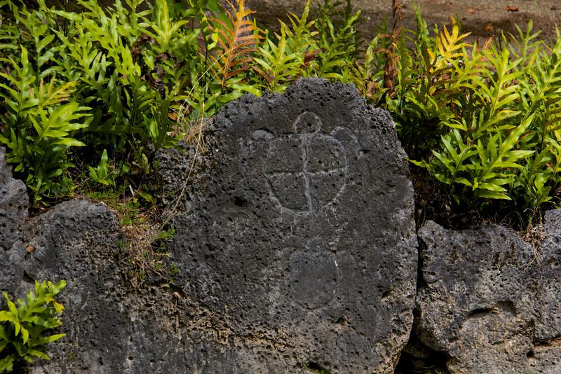 Polynesian Petroglyph, Bora Bora
