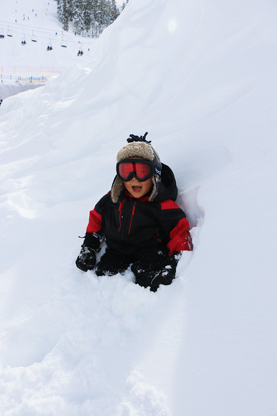 8 ft of snow fall in the last week due to the heavy winter storm left huge walls of fresh snow for ryan to play in!