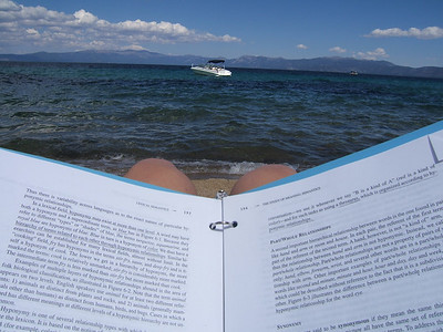The view while reading my homework.