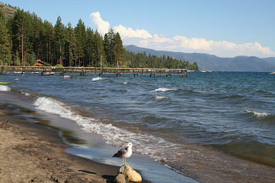 First view of Northeastern shore of Lake Tahoe