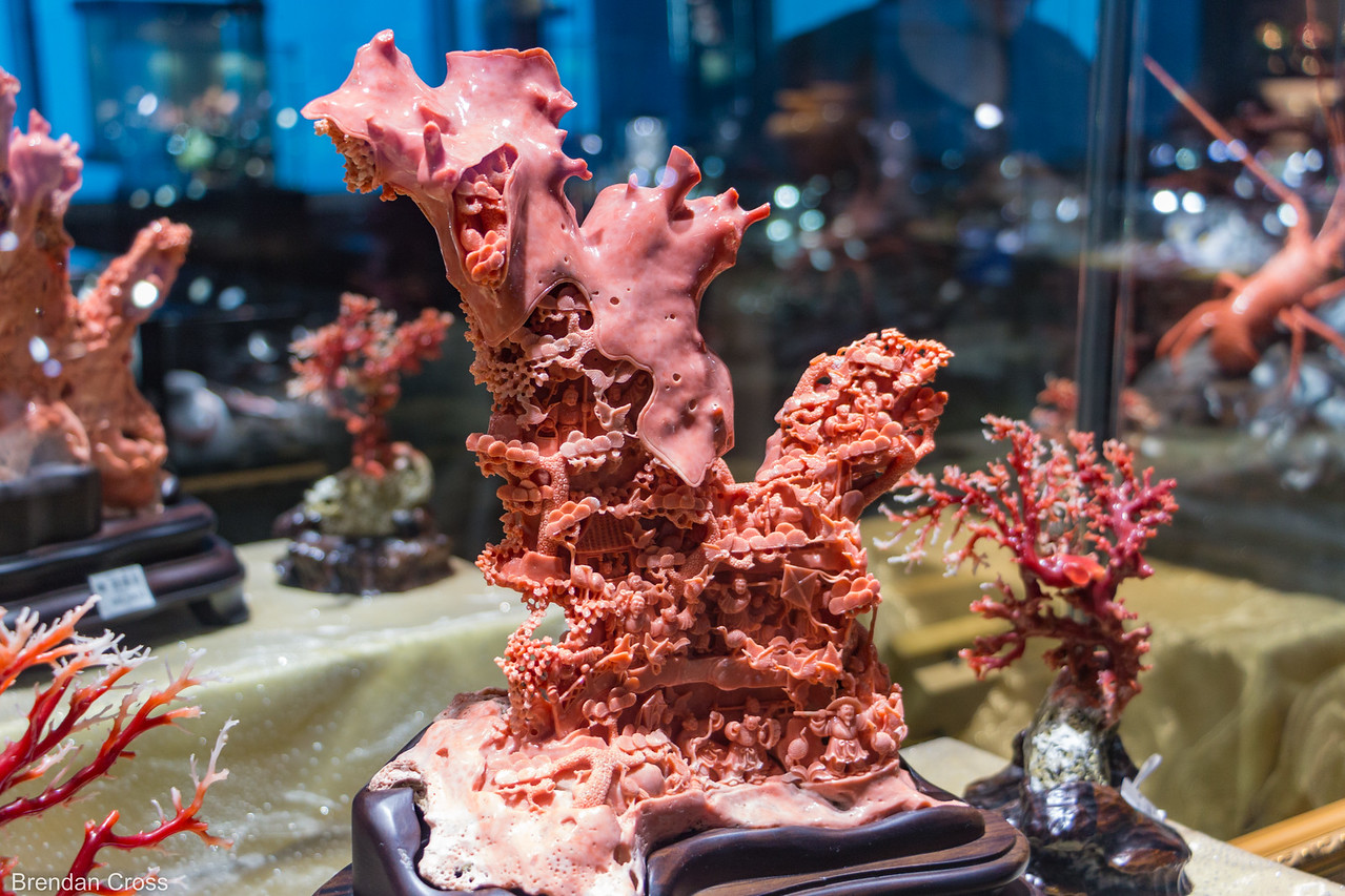 More coral stuffs.