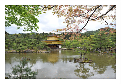 View of the Golden Pavilion at the Kinkakuji Temple in Kyoto