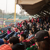 Pre-season CPBL baseball game