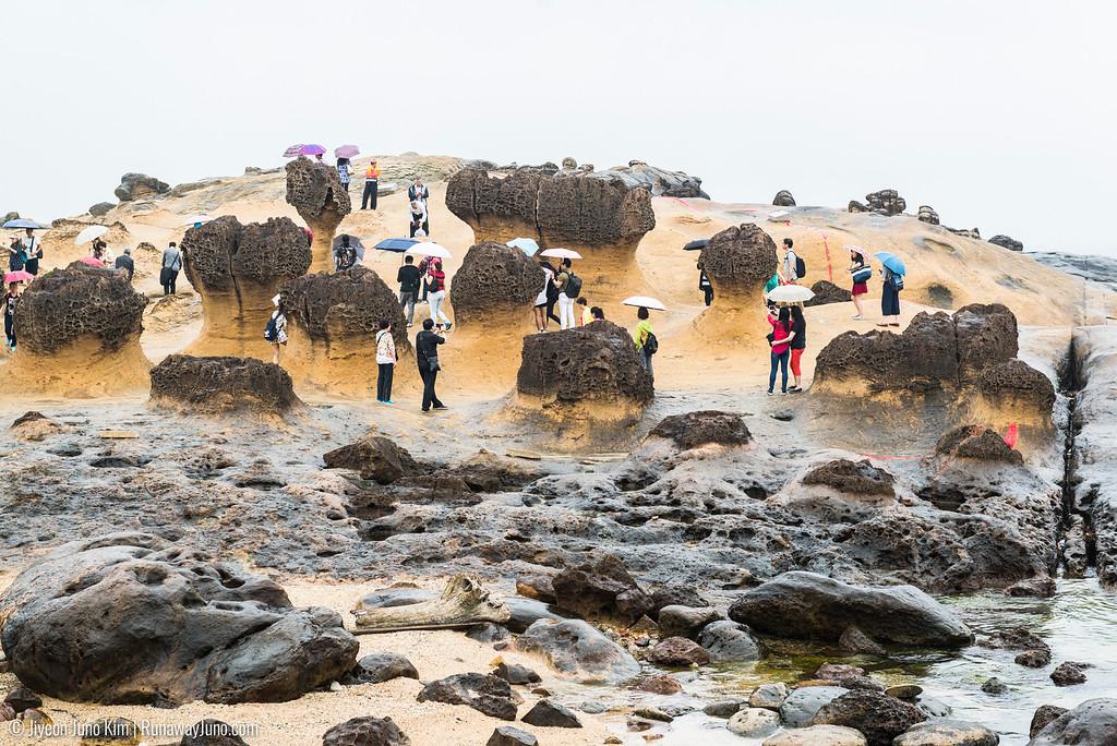 Mushroom rocks at Yehliu Geopark