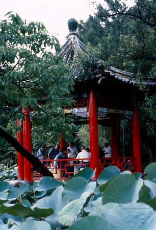 Water garden (at Chiang Kai-Shek Memorial?)