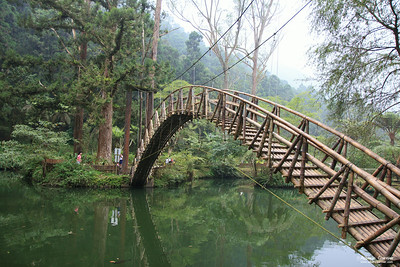 Xitou Nature Education Area, Taiwan