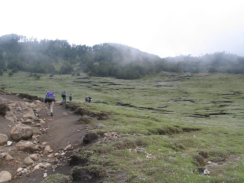I should start taking pictures at the begining of the hikes.  This is the hike to the volcano Tajumulco, which at 4220 meters is the highest point in Central America.