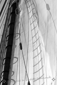 Sun in the Sails - Judith Sparhawk