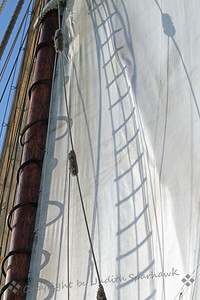 Shadows on the Sails