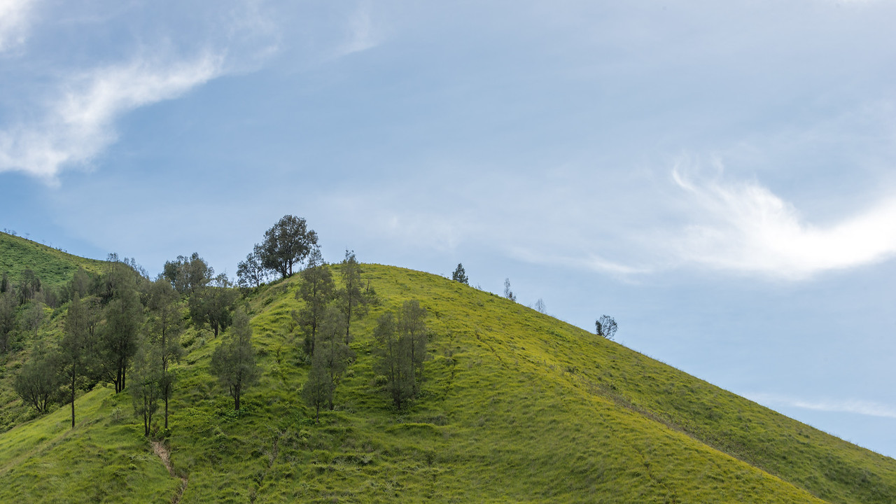 Curvy Green Hill