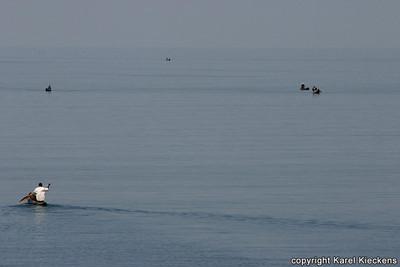 T 02_23 Malawimeer Vissers