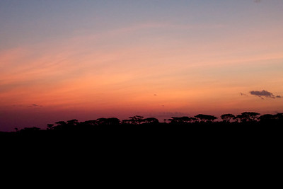 Sunset in Ndutu, Serengeti National Park, Tanzania