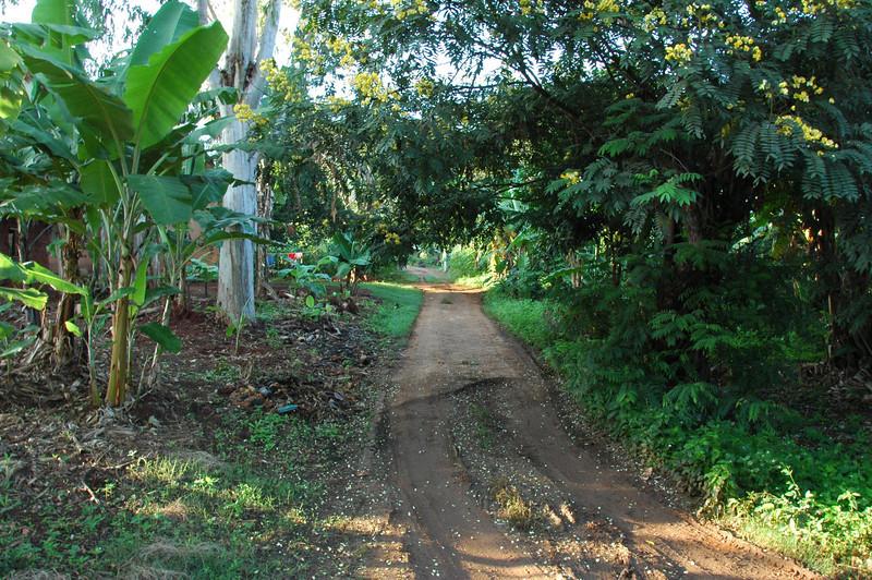 Tanzania - Morogoro 025