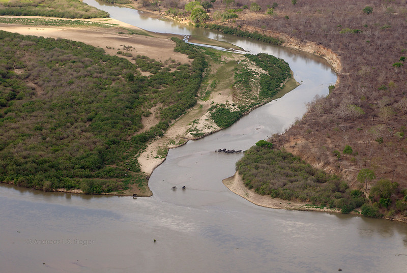 Arriving at Selous Game Reserve: first aerial view and elephants crossing