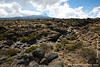 Mt. Kilimanjaro Summit and Stream at Lower Alpine Moorland