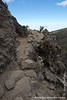 Trail up Barranco Wall