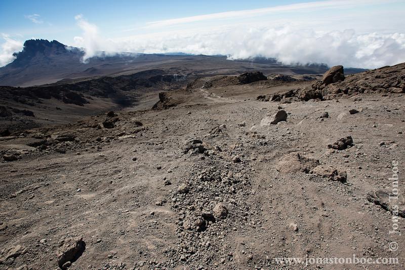 Trail and Mt. Mawenzi