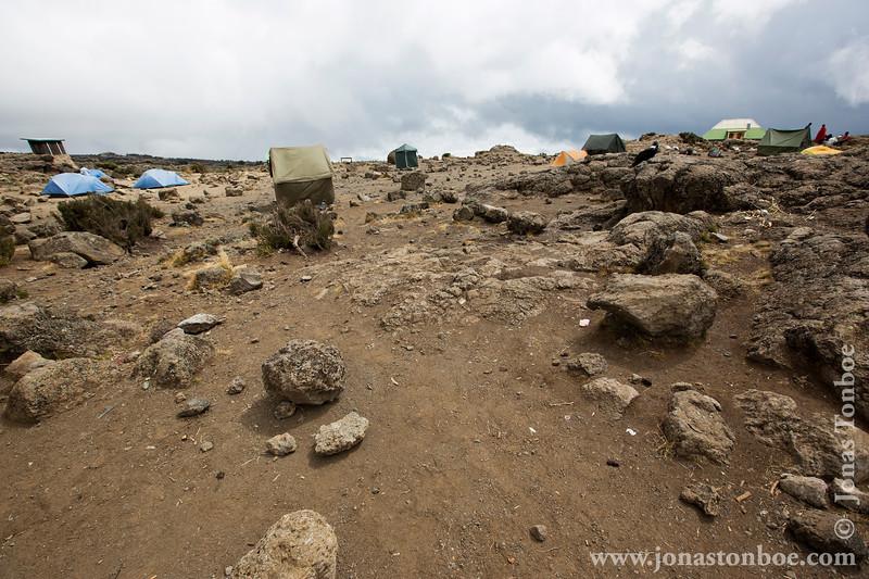 Shira 2 Camp at 3840 Meters