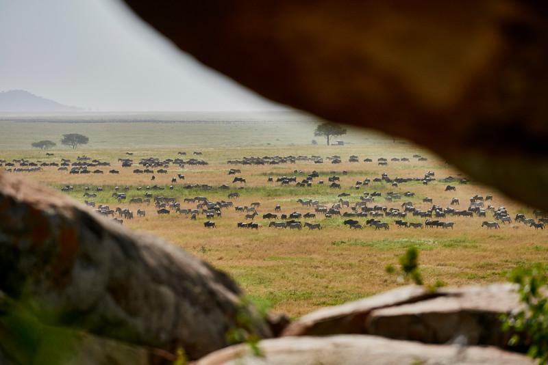 Tanzania 2013 1849