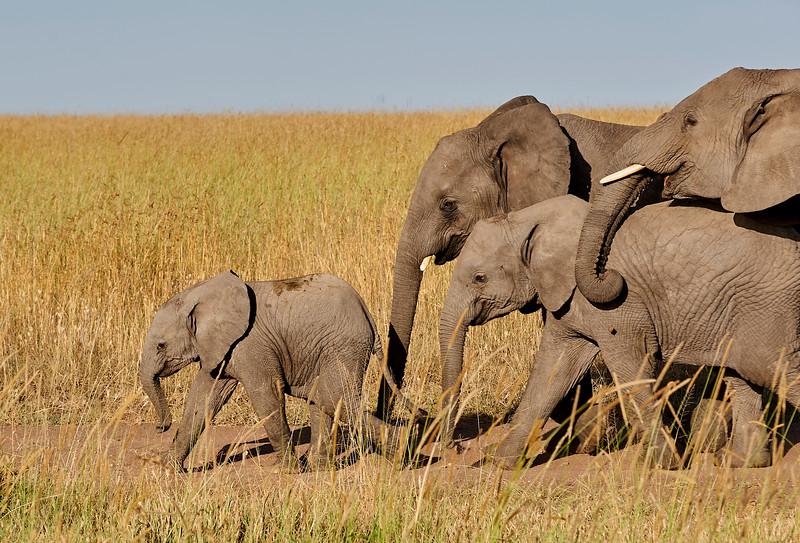 Tanzania 2013 1185