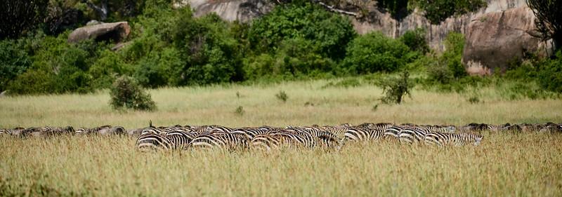Tanzania 2013 1882