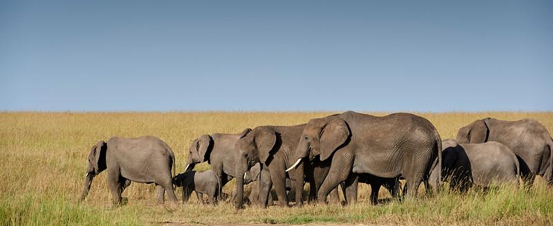 Tanzania 2013 1212