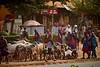 Tanzania 2013 129