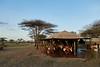 Tanzania 2013 1796