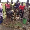 Farmers demonstrating the onion planting process. Photos by Eva J Yeo