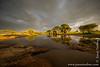 Waterhole and Baobabs