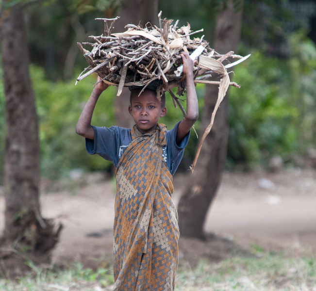 Young child carrying firewood outside of Lake Manyara park.