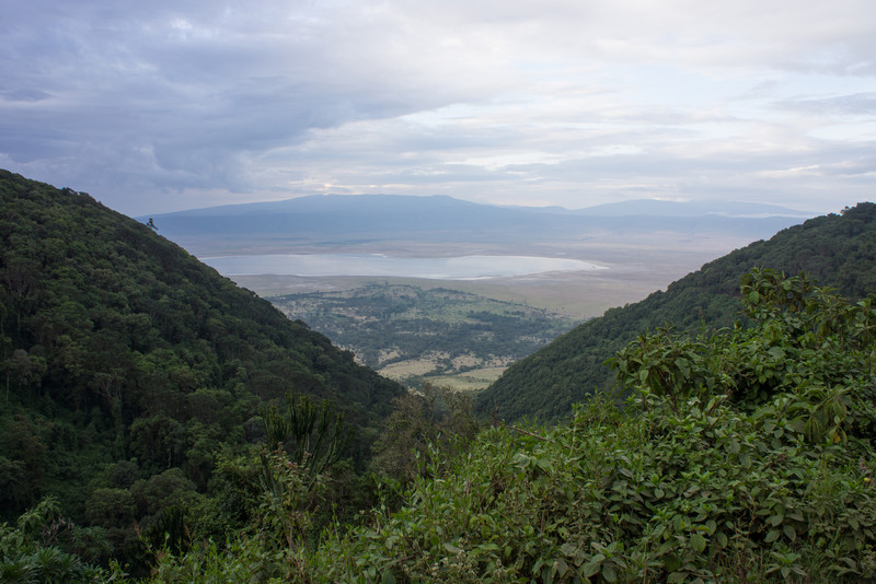 View into the crater