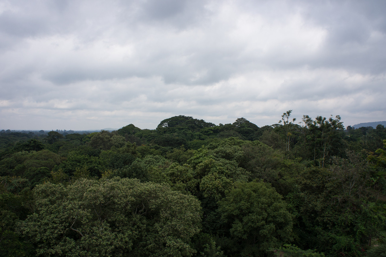 From the viewing tower at the lodge. Kilimanjaro, where are you?