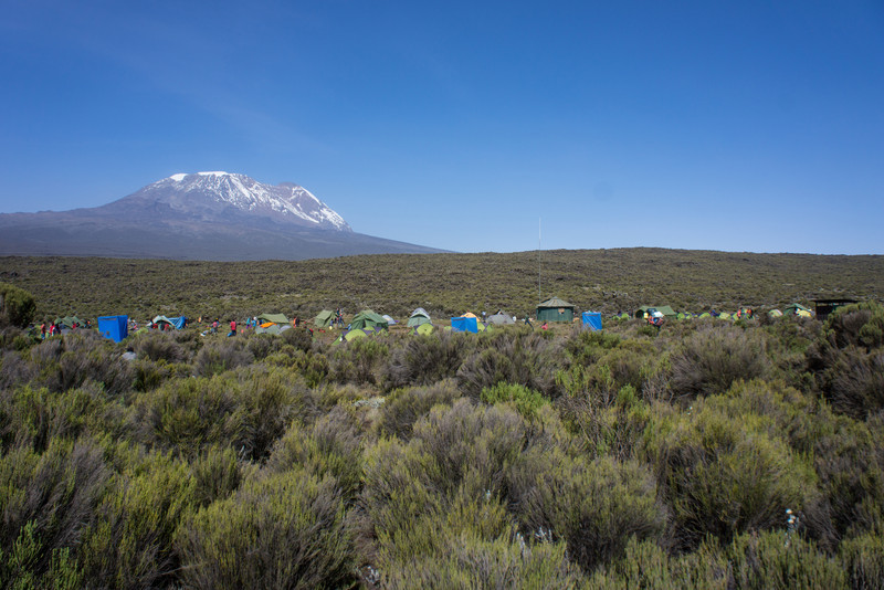 Shira 1 Camp with Kibo in the distance.