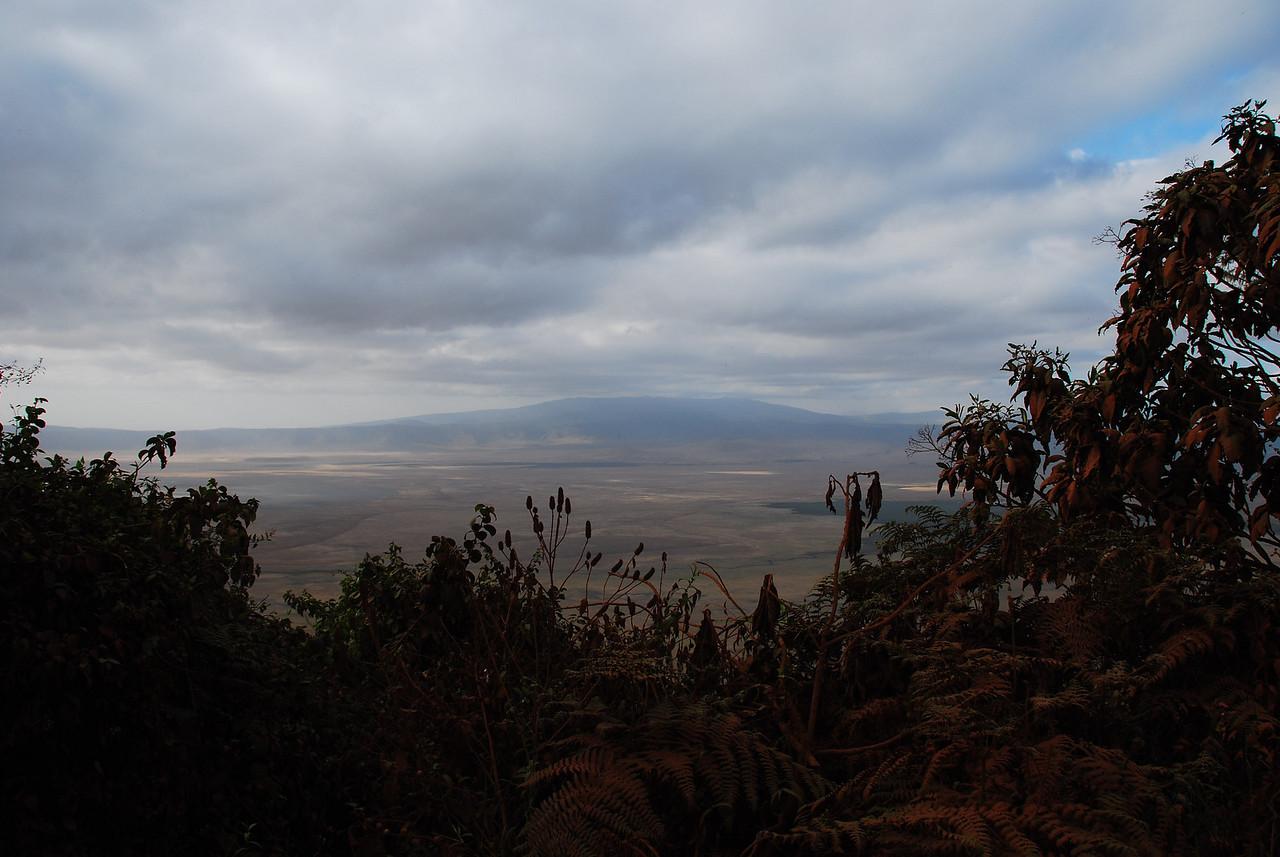 Overlooking Ngorongoro Crater.