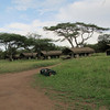 OAT private tented campsite in Serengeti Nat'l Park
