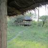 Raised tent cabin at Lake Burungi