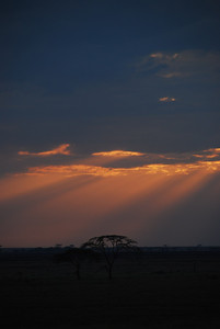 Sunrise over the Serengeti.