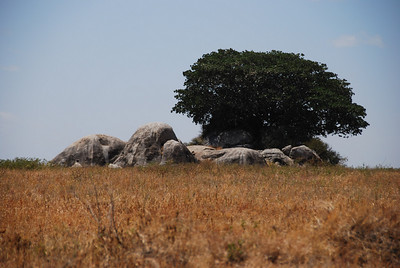 An interesting rock formation - a perfect hiding place for lions.