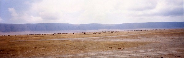 The Ngorongoro Crater floor teams with a diversity of wildlife. (Click on photo for larger size.)