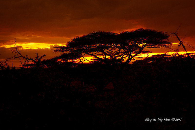 Sunset 34<br /> Sunset over by Lake Masek in the Serengeti