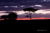Sunset 9<br /> Sunset by Lake Masek in the Serengeti