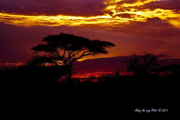 Sunset 27<br /> Sunset over by Lake Masek in the Serengeti
