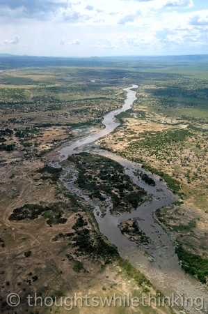 With the Mara River below and Kogatende airstrip in center left, we are now over the Serengeti National Park. After landing at about 3:30 pm, we will be off to the nearby Sayari Mara Camp.
