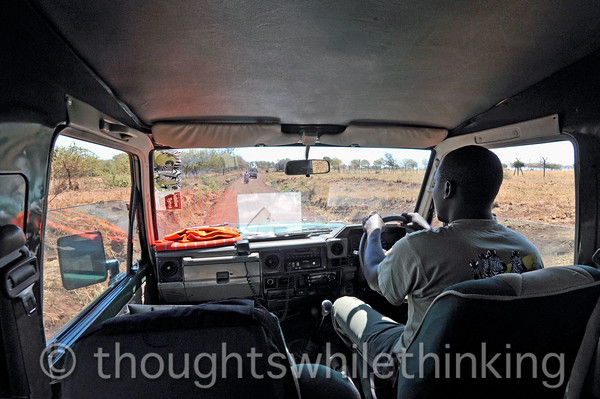 We turned off the highway onto a dirt road leading to Manyara airstrip, Nelson at the wheel.